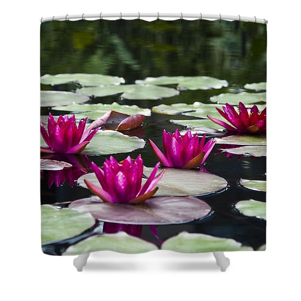 Red Water Lillies Shower Curtain