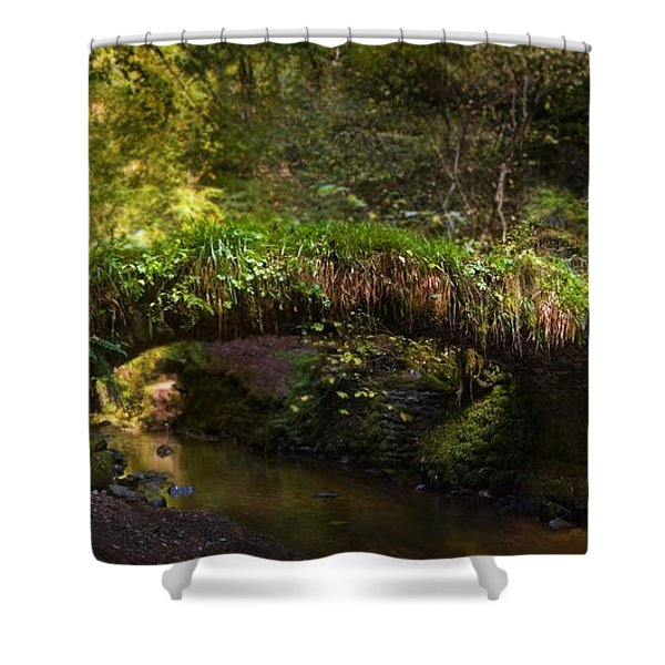 Reelig Bridge And Grotto Shower Curtain
