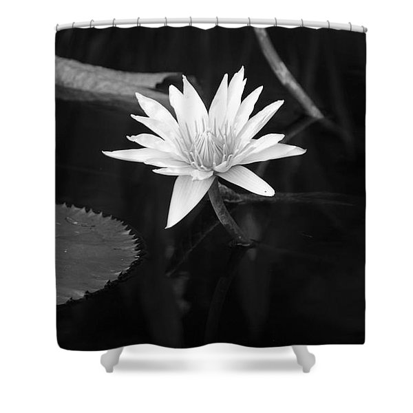 Reflections Of Nature Shower Curtain