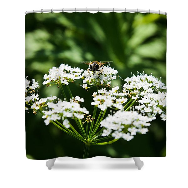 Refractions Shower Curtain