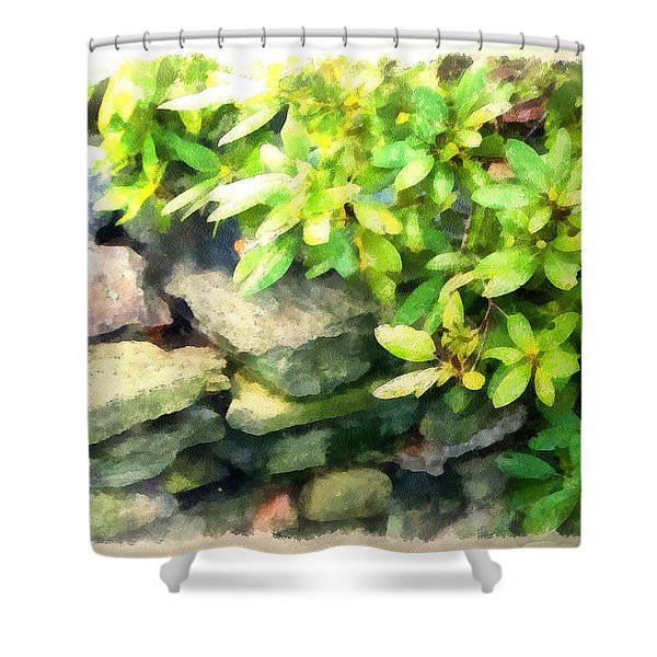 Rhodas And Stones Shower Curtain