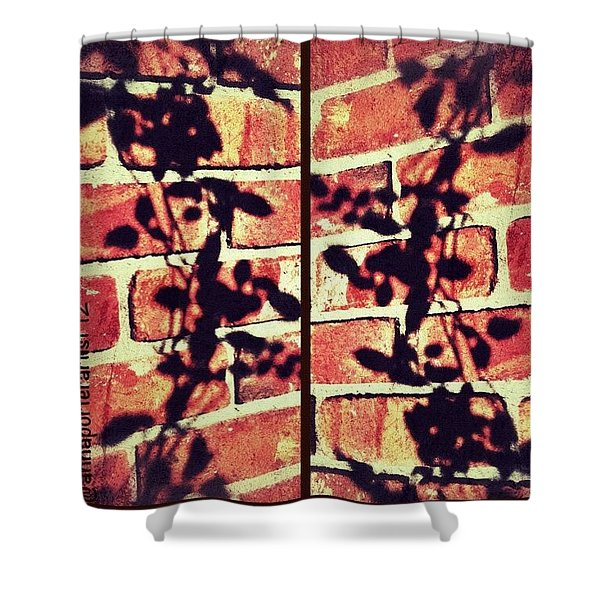 Rose Leaves - Shadow On Brick Shower Curtain