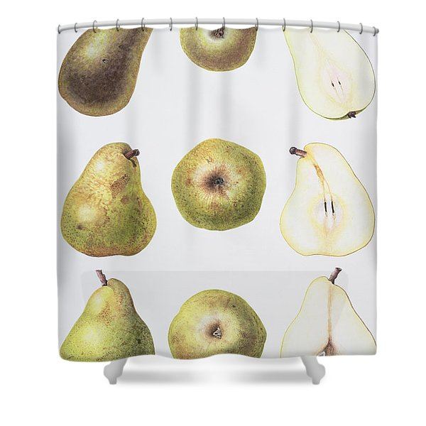Six Pears Shower Curtain