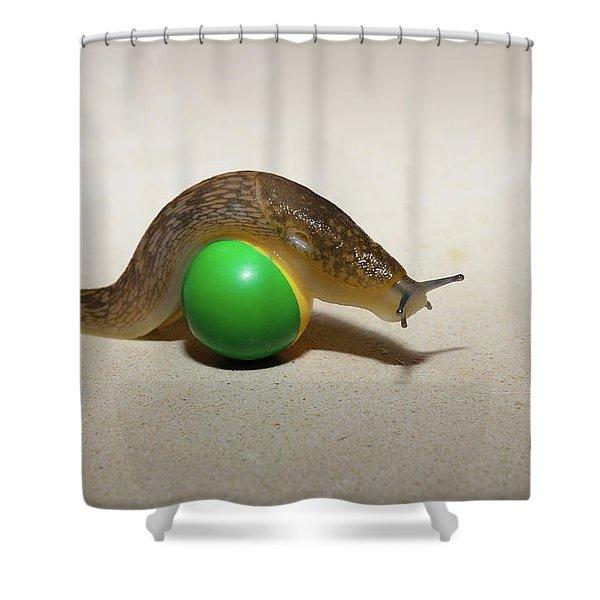 Slug On The Ball Shower Curtain