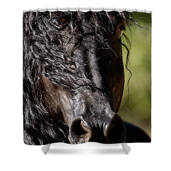 Snorting Good Looks Shower Curtain
