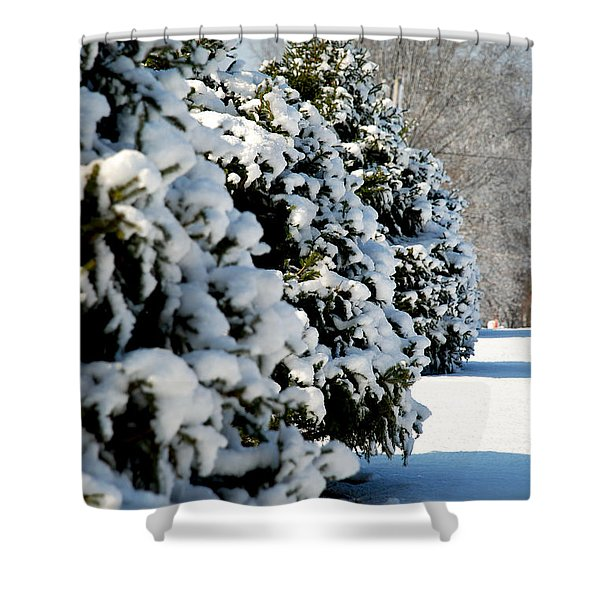 Snow In The Trees Shower Curtain