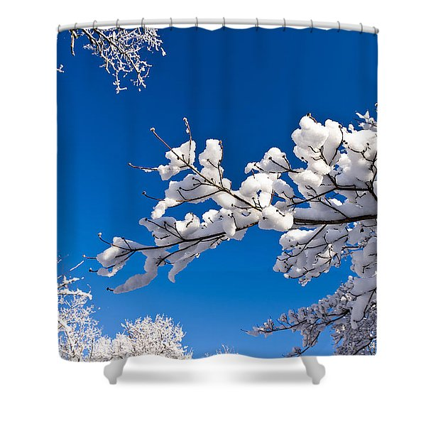 Snowy Trees And Blue Sky Shower Curtain