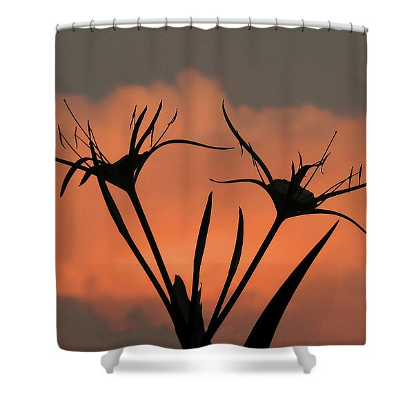 Spider Lilies At Sunset Shower Curtain