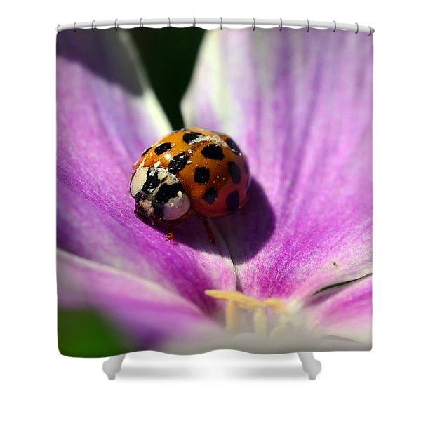 Spotted Lady Shower Curtain