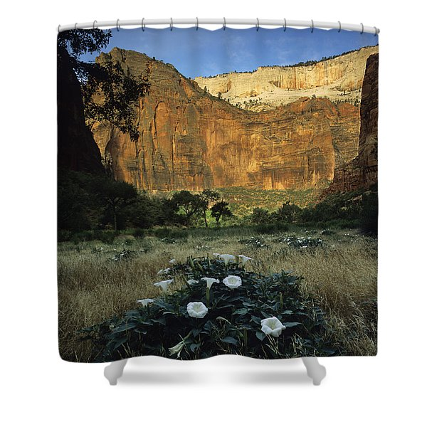 Spring At Big Bend Shower Curtain