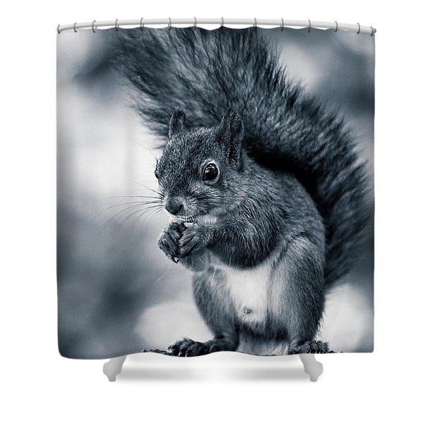 Squirrel In Monochrome Shower Curtain