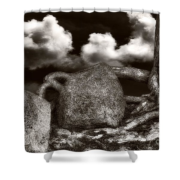 Stones And Roots Shower Curtain