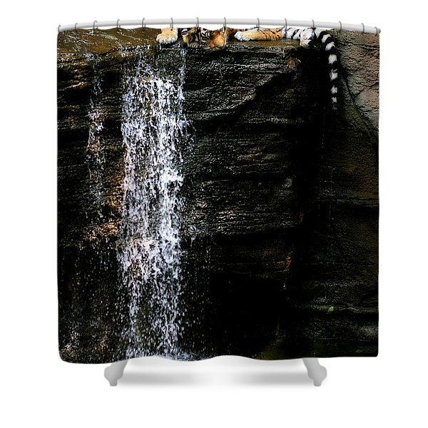 Strength At Rest Shower Curtain