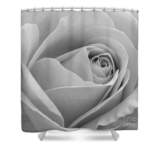 Study In Black And White Shower Curtain