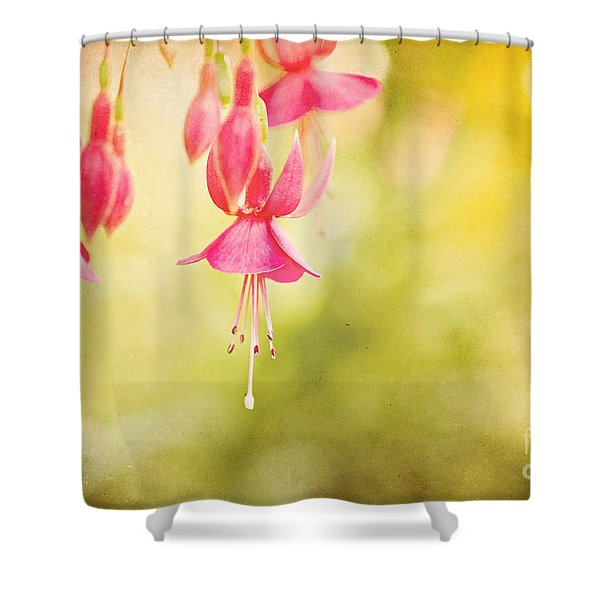 Summer Lov'n Shower Curtain