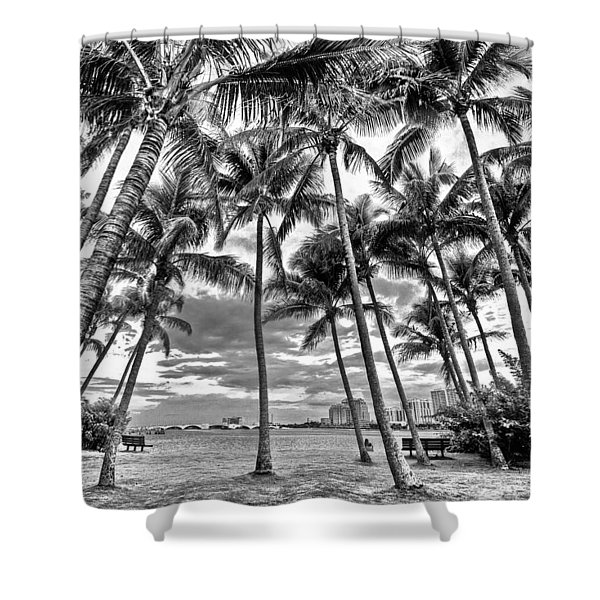 Sunset Grove At Palm Beach Shower Curtain