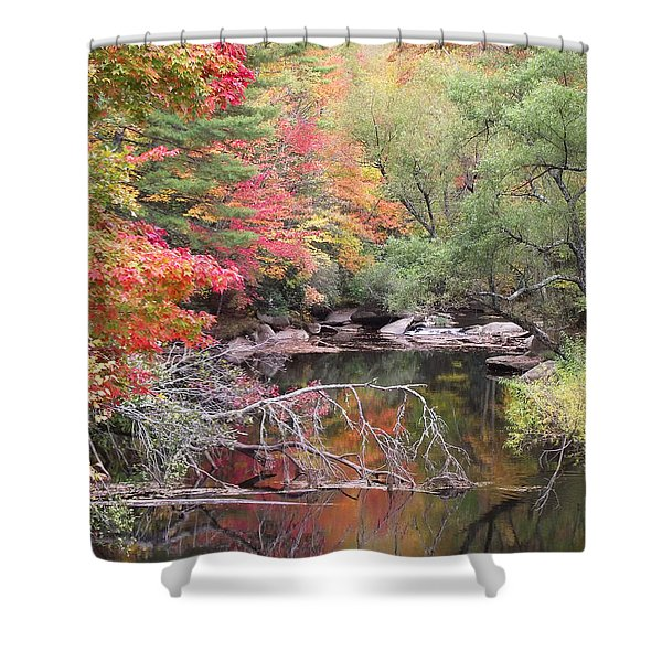 Tanasee Creek In The Fall Shower Curtain