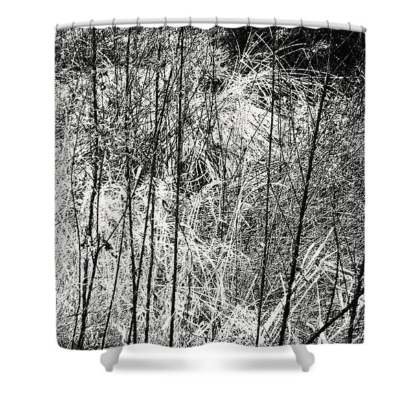 Tangled Weeds 2 Shower Curtain