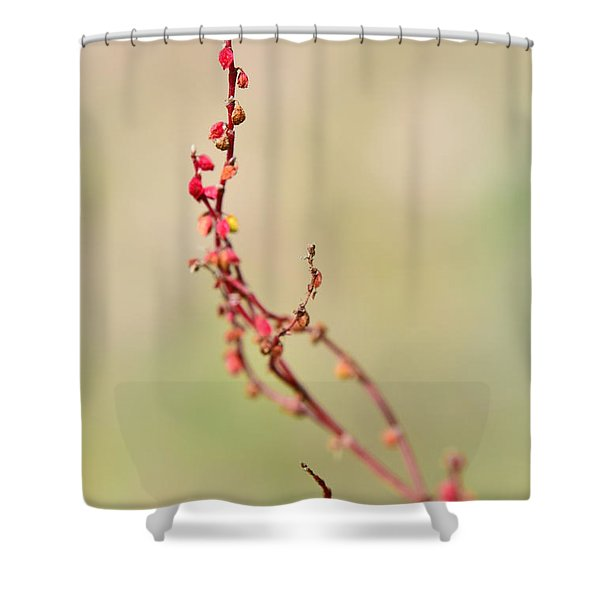 Tenderness In Japanese Style Shower Curtain