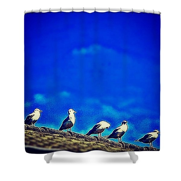 The Birds Shower Curtain
