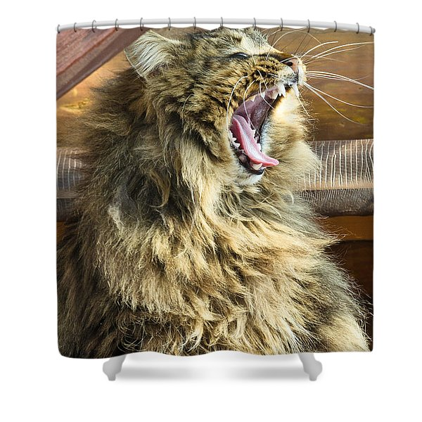 The Cat Who Loves To Sing Shower Curtain