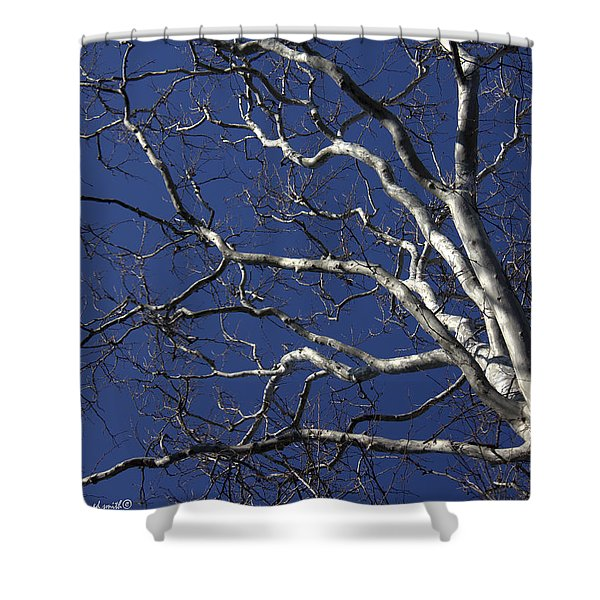 The Family Tree Shower Curtain