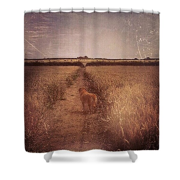 The Long Path Shower Curtain