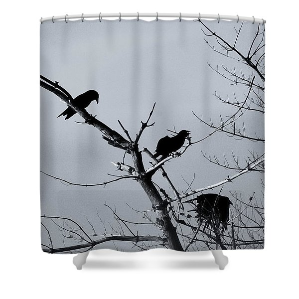 The Raven Tree Shower Curtain