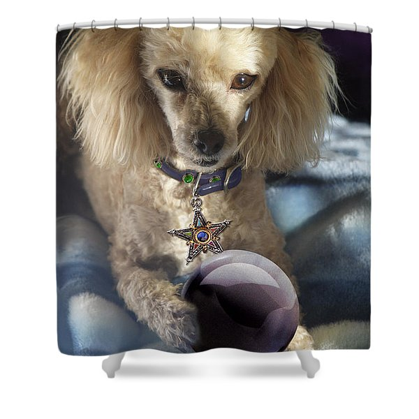 The Wizard Of Dogs Shower Curtain