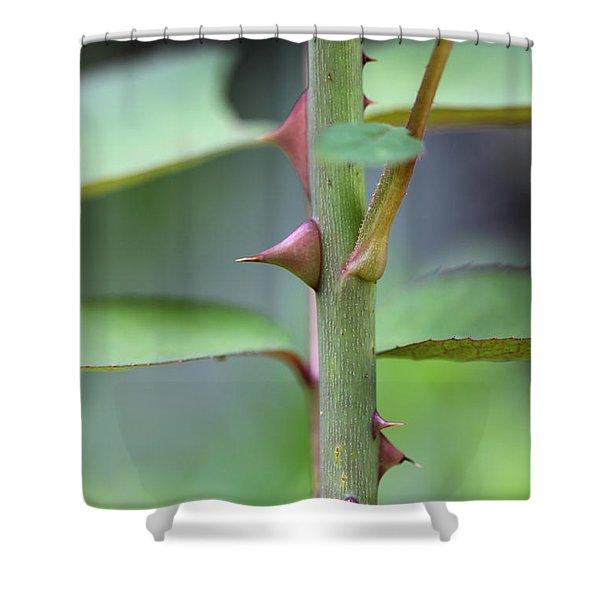 Thorny Stem Shower Curtain