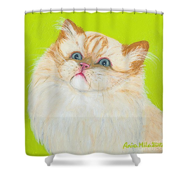 Treat Please Shower Curtain