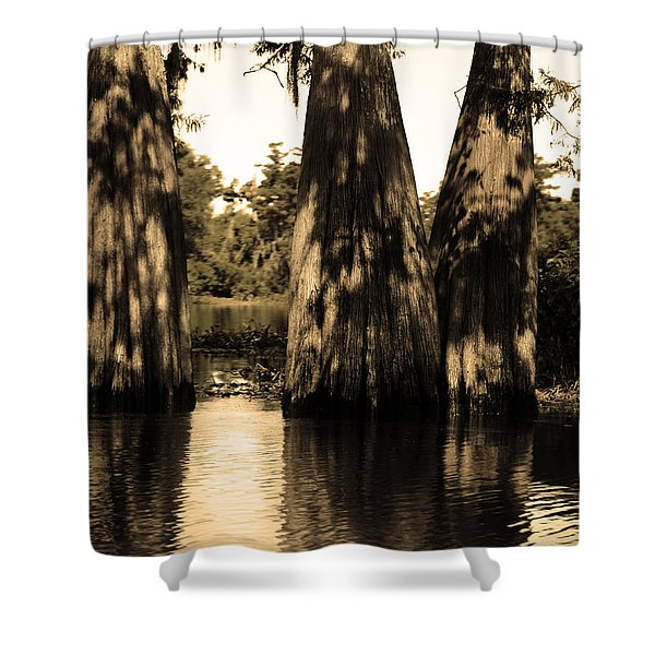 Trees In The Basin Shower Curtain