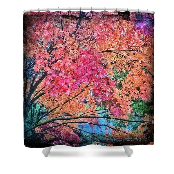 Vine Maple - Fall Color Shower Curtain