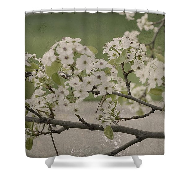 Vintage Spring Shower Curtain