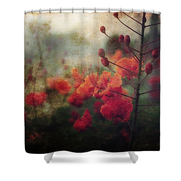 Waiting For Better Days Shower Curtain