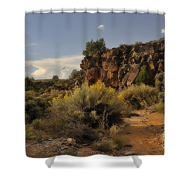 Westward Across The Mesa Shower Curtain