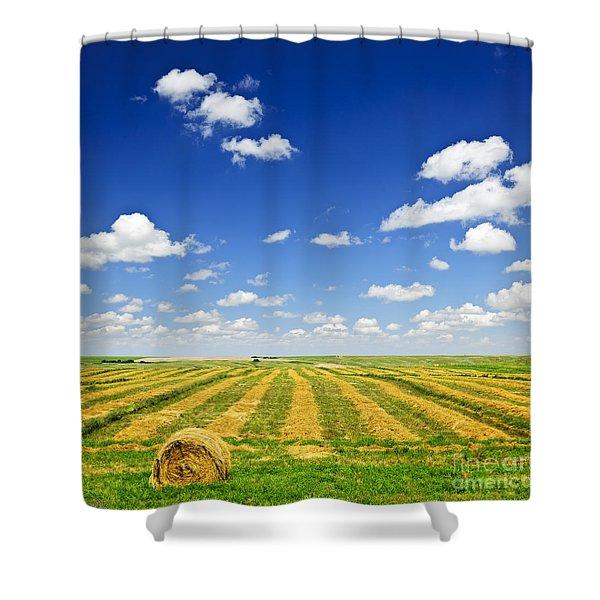 Wheat Farm Field At Harvest Shower Curtain