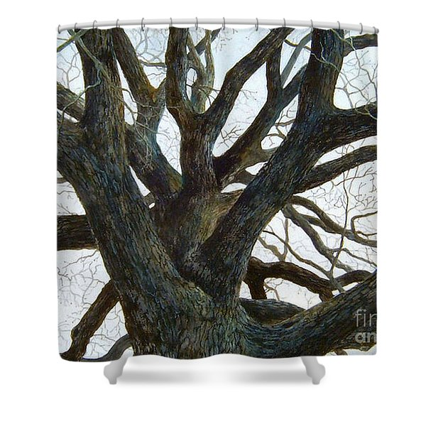 Where Have All The Children Gone  Sold  Prints Available Shower Curtain