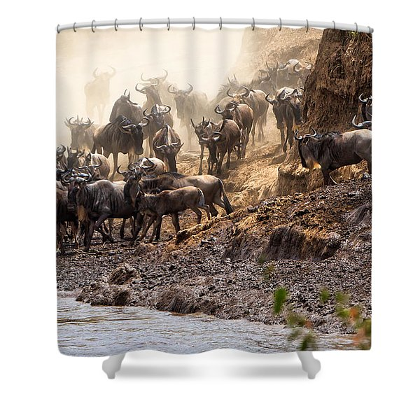 Wildebeest Before The Crossing Shower Curtain