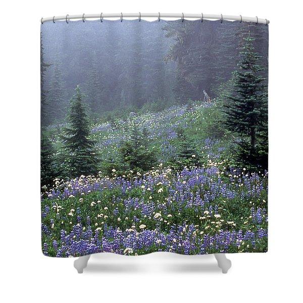 Wildflower Meadow Mt Rainier Shower Curtain