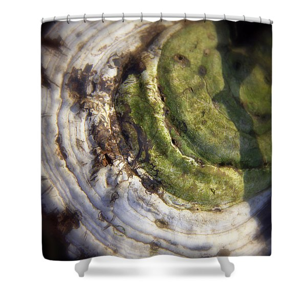 Winter Fungi Shower Curtain
