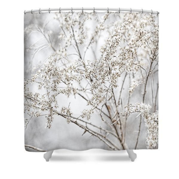 Winter Sight Shower Curtain
