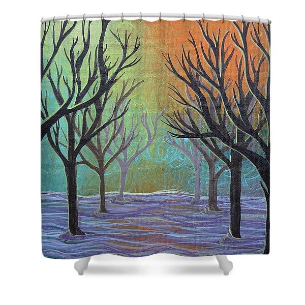 Winter Solitude 11 Shower Curtain