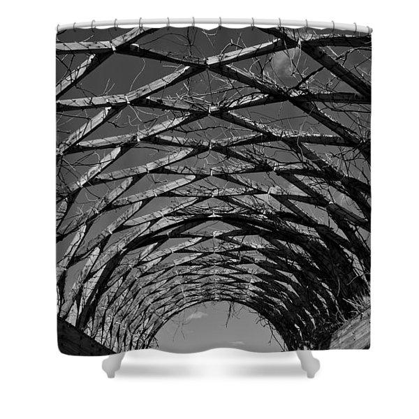 Winter Trellis Shower Curtain