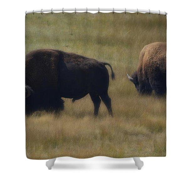 Wyoming Buffalo Shower Curtain