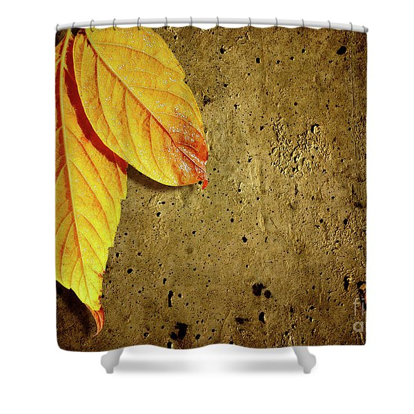 Yellow Fall Leafs Shower Curtain