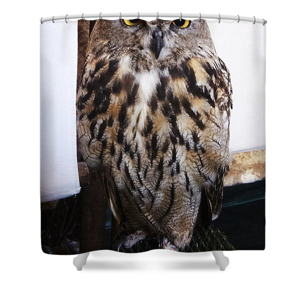 Yellow Owl Eyes Shower Curtain