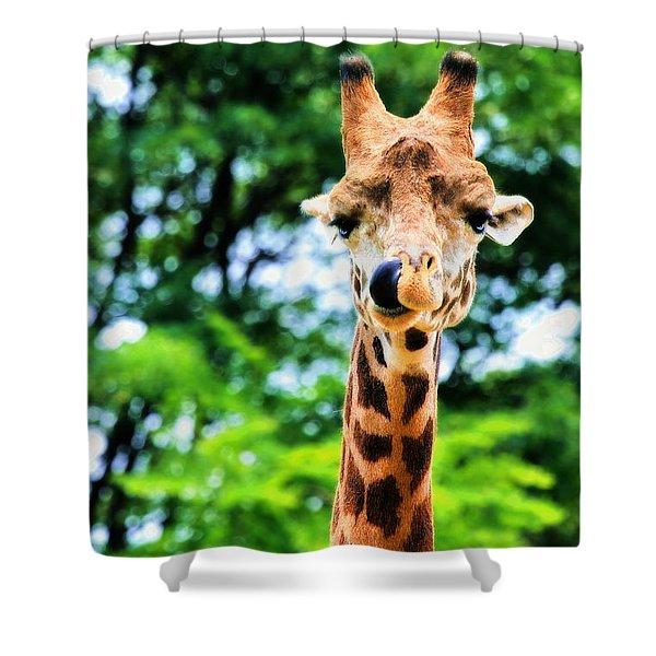 Yum Sllllllurrrp Shower Curtain