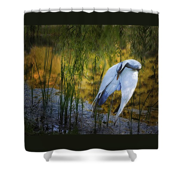Shower Curtain featuring the photograph Zen Pond by Melinda Hughes-Berland