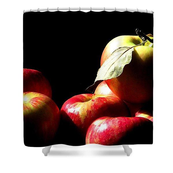 Apple Season Shower Curtain